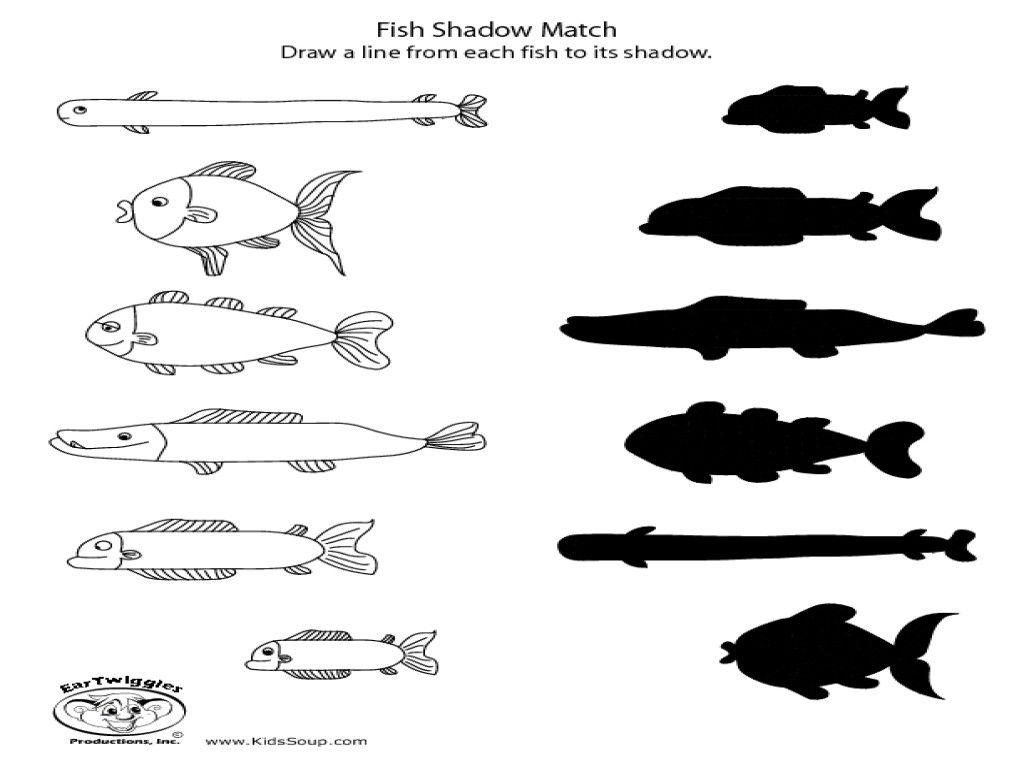 3 Ocean Animals Worksheets Preschool Fish Shadow Match Kindergarten 2nd Grade Worksheet Preschool Worksheets Kindergarten Worksheets Animal Worksheets [ 768 x 1024 Pixel ]