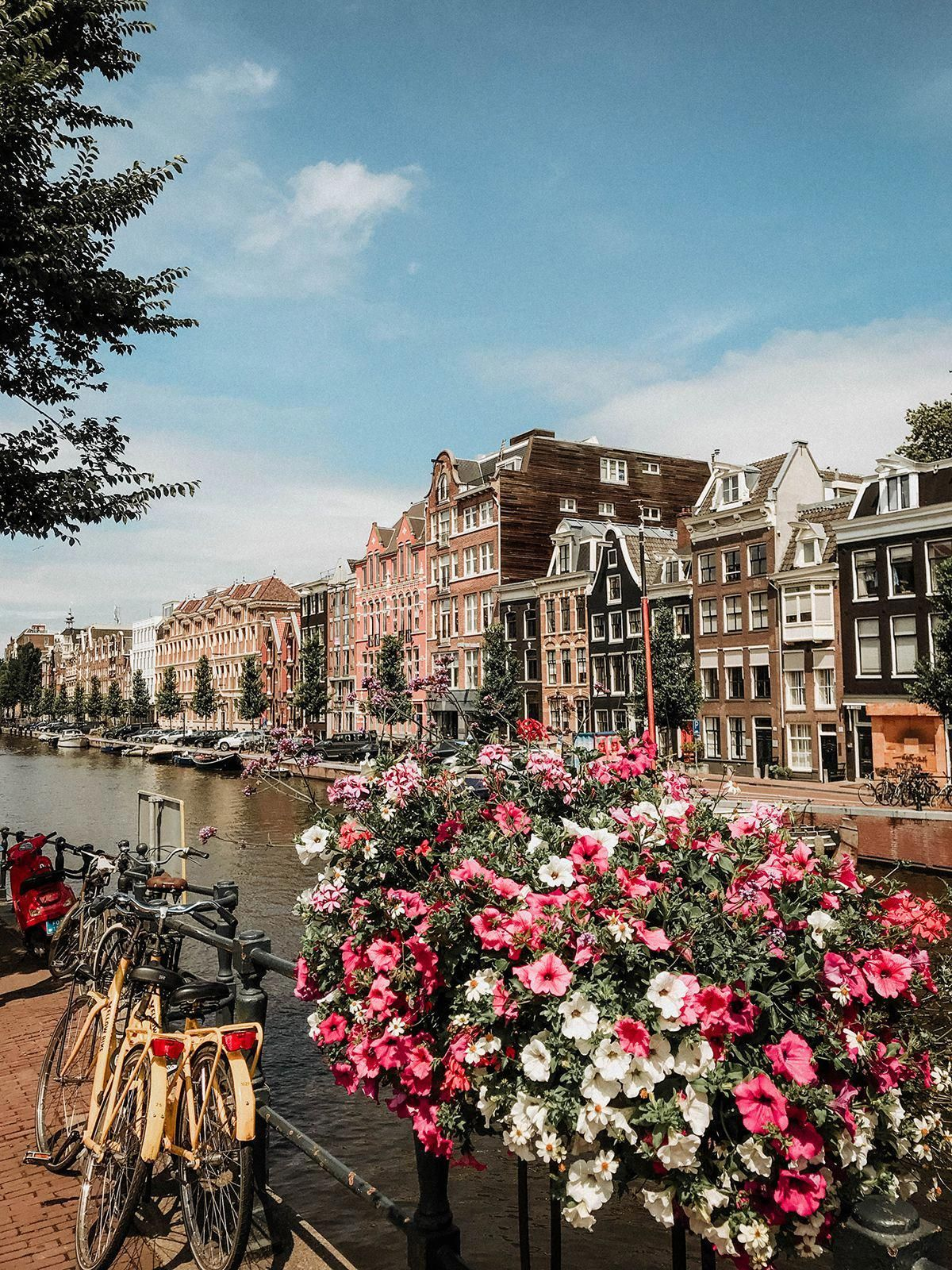 Que Hacer Y Que No En Amsterdam Travel Aesthetic Amsterdam Travel Places To Travel