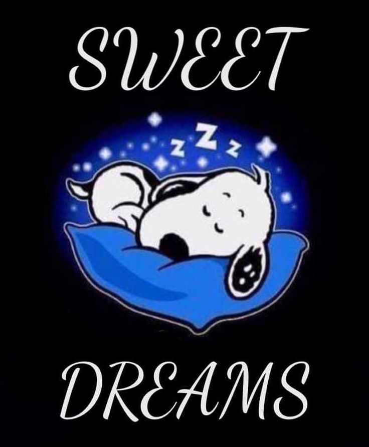 Sweet Dreams | Snoopy funny, Snoopy quotes, Snoopy