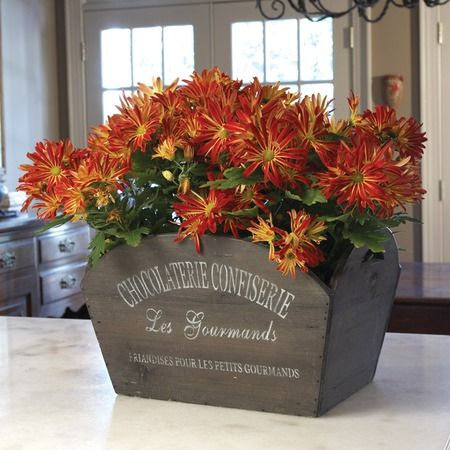 I pinned this Les Gourmands Crate from the Napa Home & Garden event at Joss and Main!