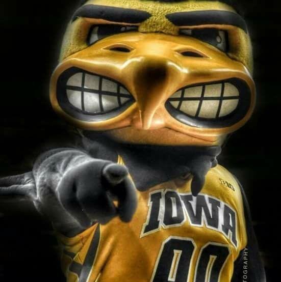 Pin By Debra Williams On Iowa Go Hawkeyes Iowa Hawkeye