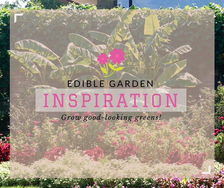 Grow good-looking greens!