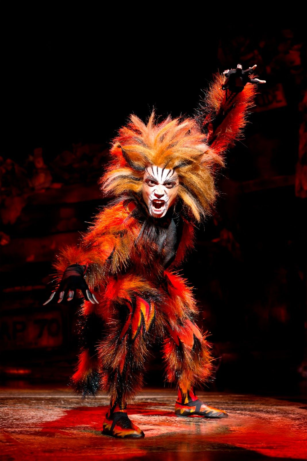 Production Images Released For Cats In Blackpool Pretty Cats Cats Cats Musical
