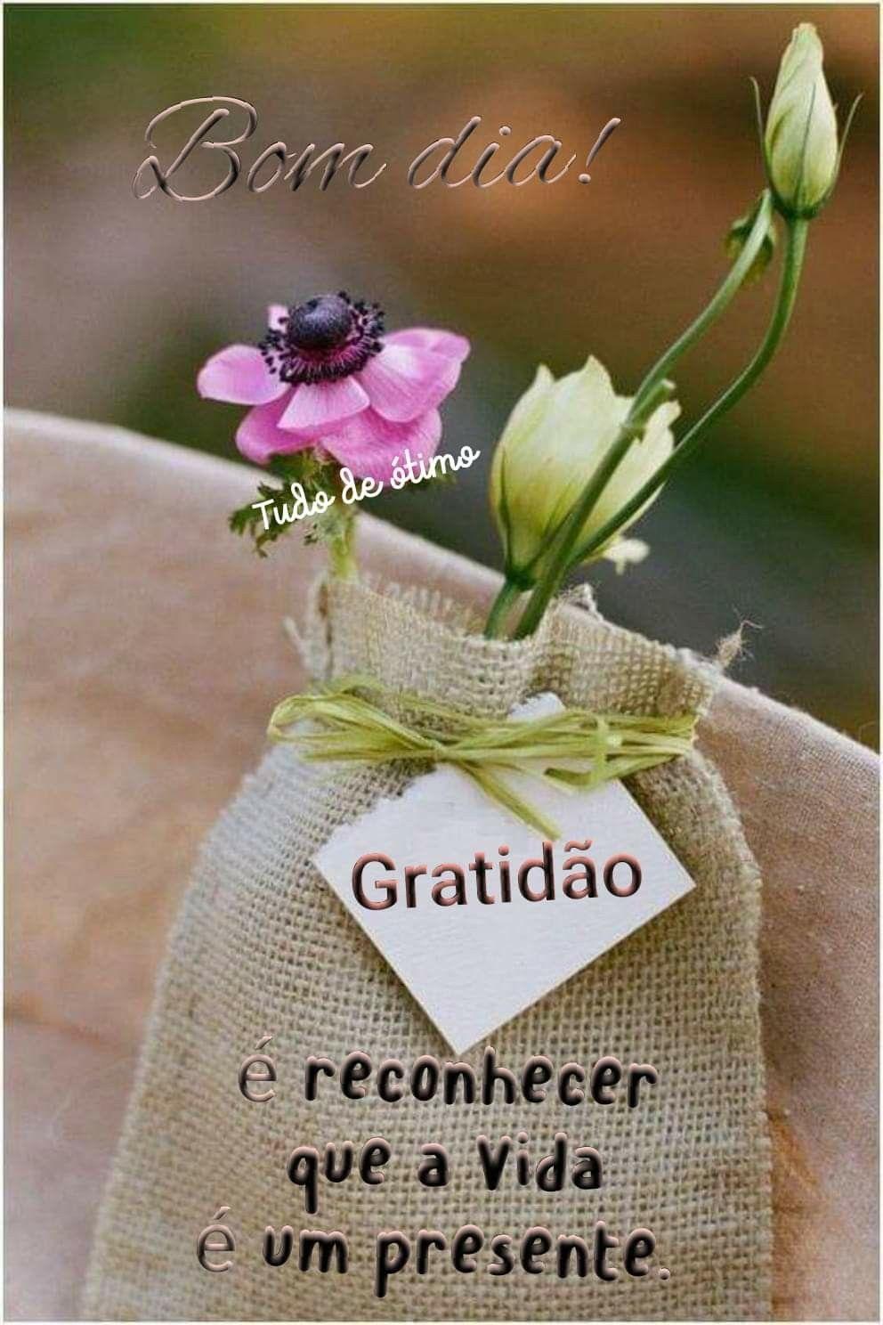 Pin De Ana Maria Em Greetings Saludos Bom Dia Com Jesus Bom