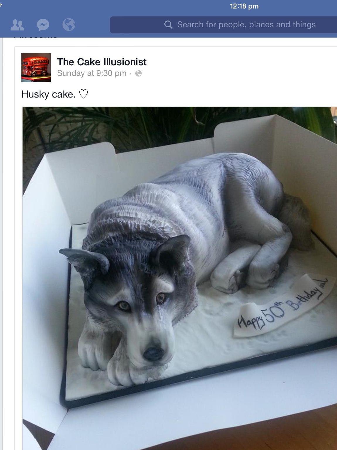 Pin Di Kriszta Csaszi Su Decorated Cakes Kulonleges Tortak Torte Incredibili Torte Animali