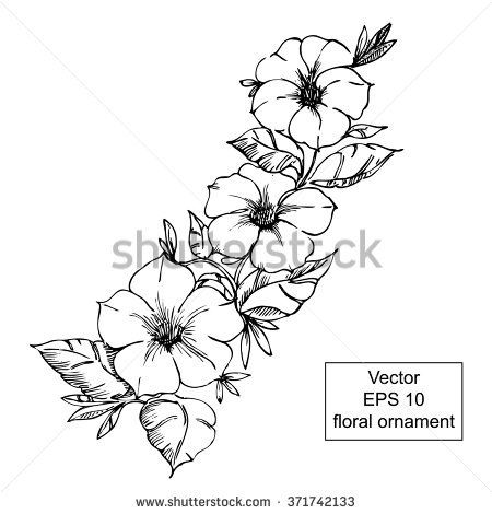 Tattoo Black And White Petunia Black And White Floral Ornament With Flowers And Leaves Hand Drawn Petunia Tattoo Petunias Petunia Flower