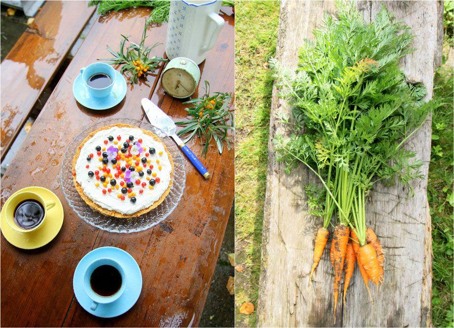 Raaka Porkkanakakku