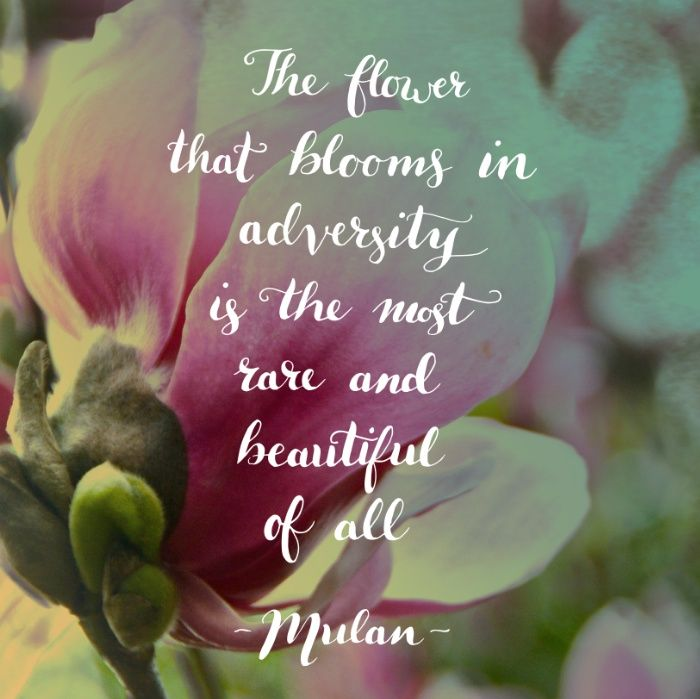 Wednesday Wisdom Rare Is Beautiful Tinysuperhero Motivation