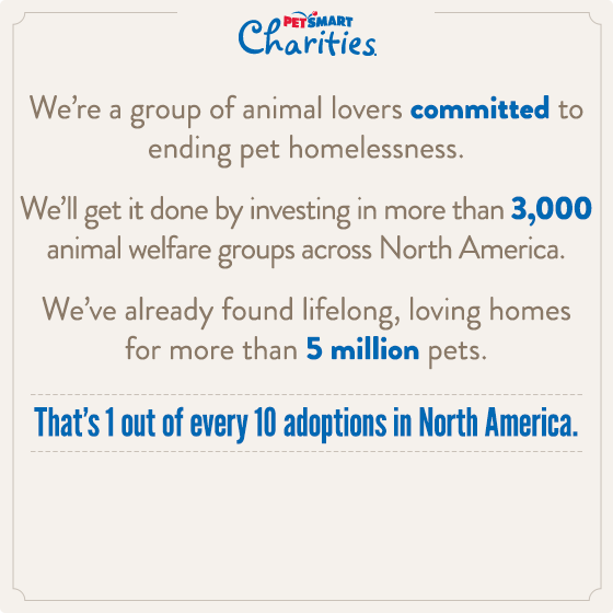 Petsmart Charities Petsmart Charity Pets