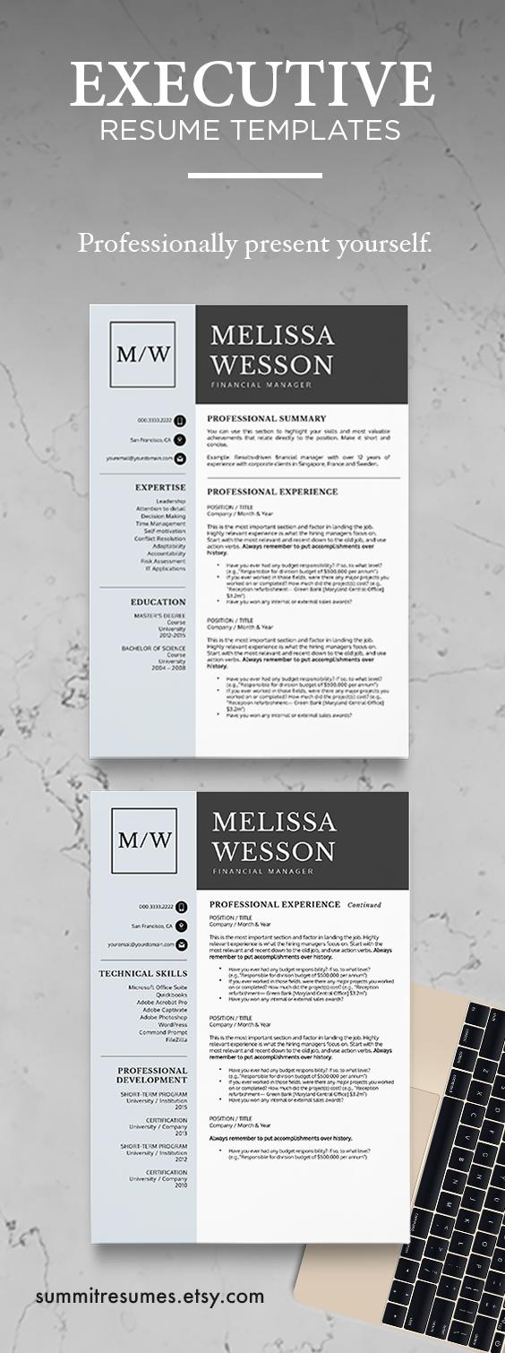 Executive Resume Template Professional Resume Template