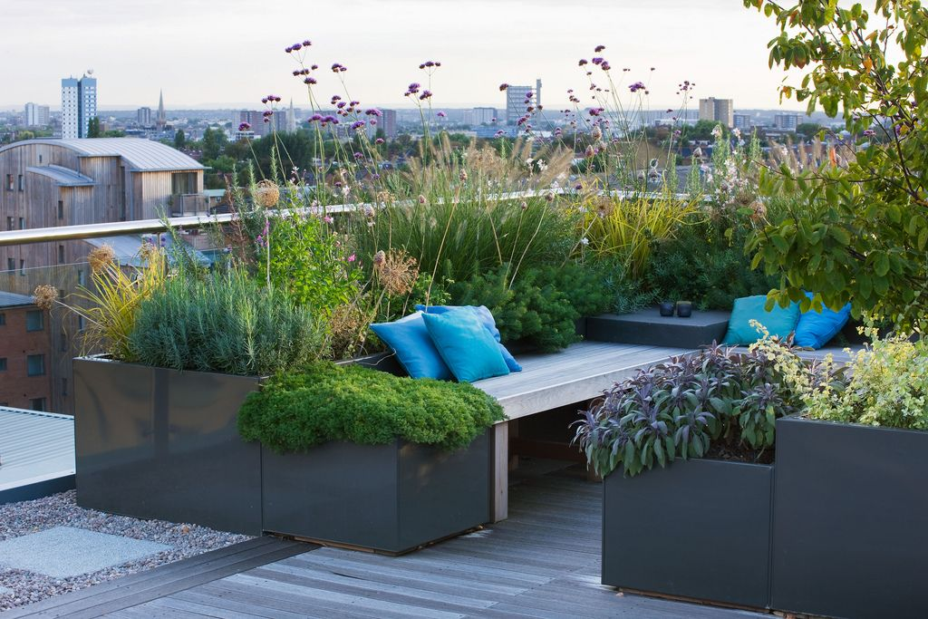 Planters on roof garden by Charlotte Rowe