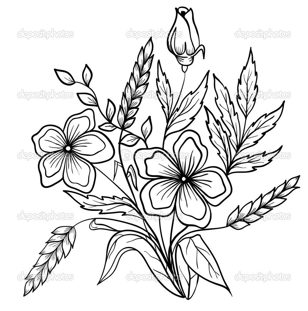 Arrangement Of Flowers Black And White Outline Drawing Of Lines