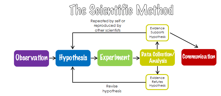 Image result for concept map for scientific methods | Labs