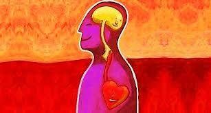 Risultati immagini per corpo mente cuore