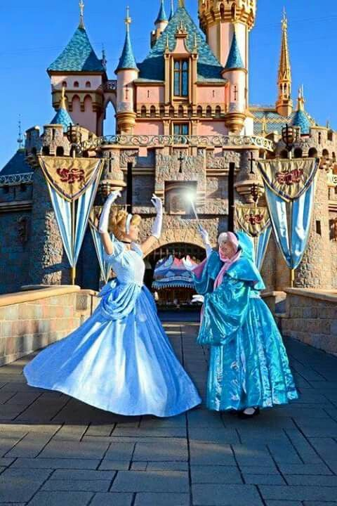 Cinderella And Fairy Godmother Disney Face Characters Disney