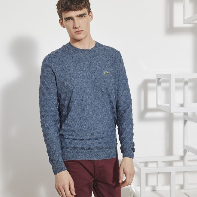 f458ea78a1 Lacoste LIVE crew neck sweater in cotton with triangle motif | Sh*t ...