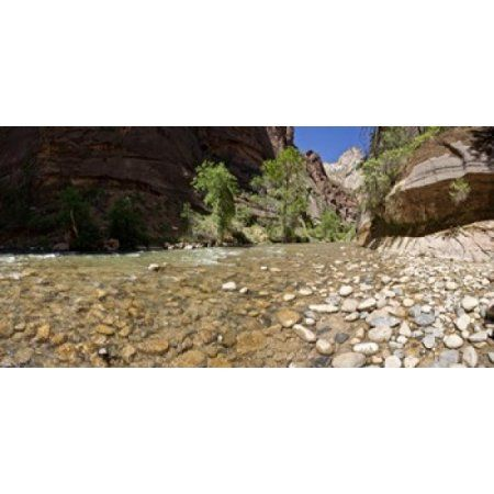North Fork of the Virgin River Zion National Park Washington County Utah USA Canvas Art - Panoramic Images (24 x 12)