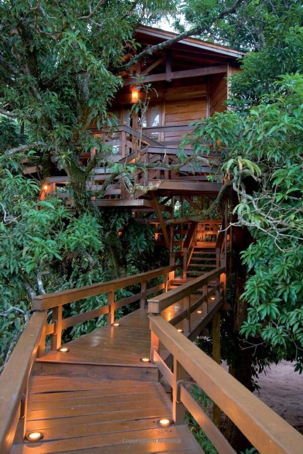 pin by erica matthews on tree houses in 2019