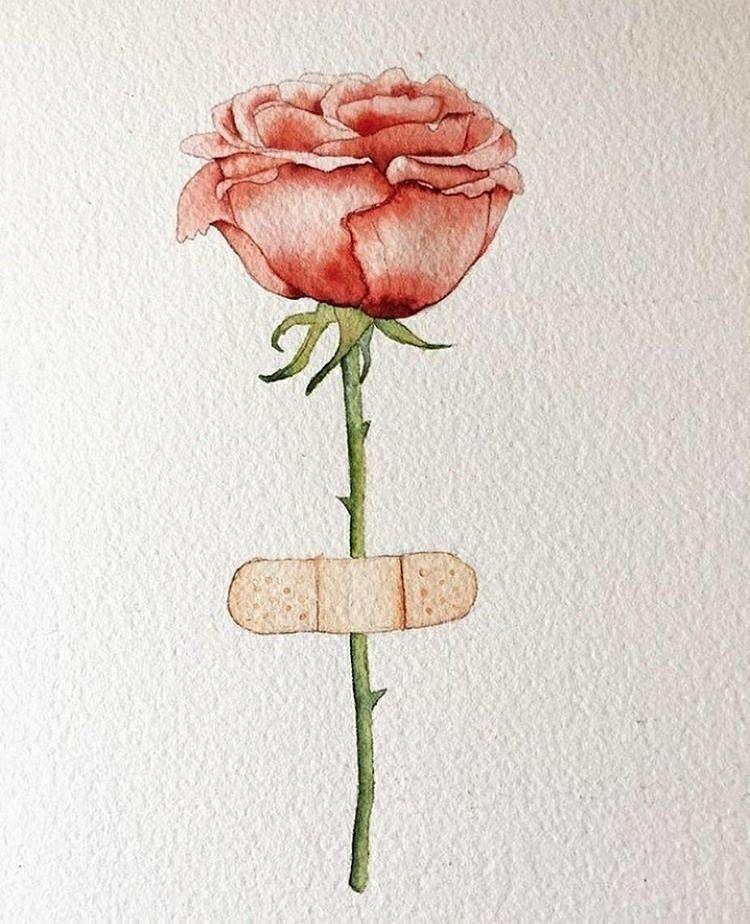 Rosa. Curita. | Frases de instagram, Arte, Arte gráfico