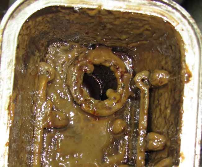 sludge in motor oil from some store bought cheap engine flush. Don't let this happen to you, only use protec engine flush.