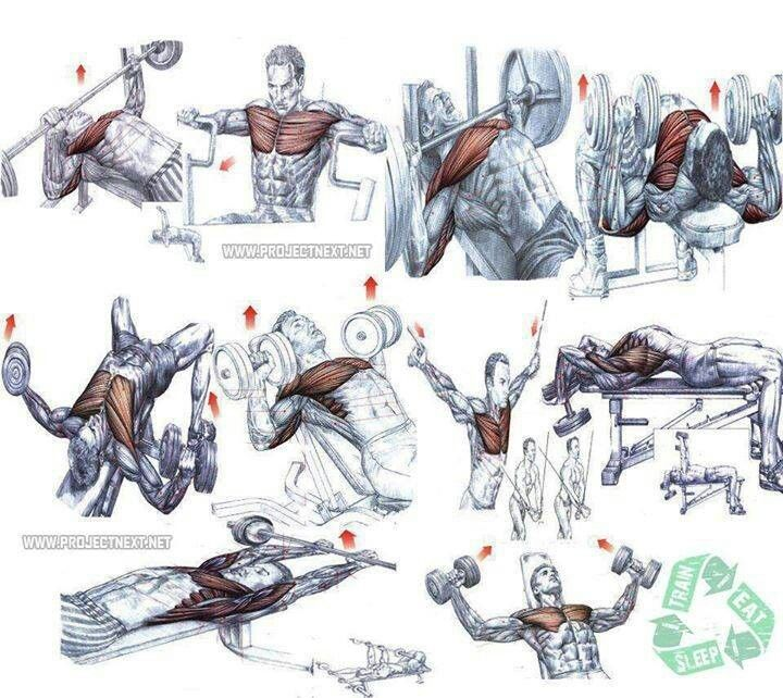 This is a great diagram of various chest/arm/shoulder exercises and ...