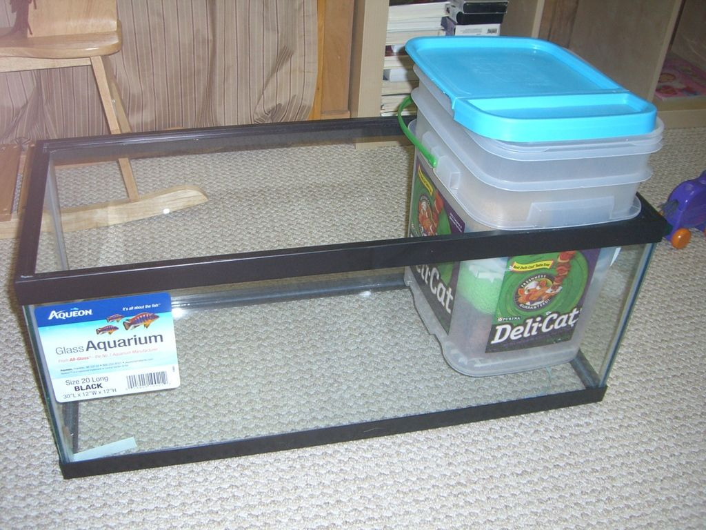 Build a sump freshwater aquarium care pinterest sump for How to reseal a fish tank