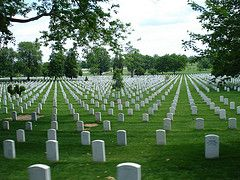 "Arlington National Cemetery my father walked over to look at graves. At 16  I asked if he knew these men! He went into full salute and said, ""They are all my brothers!"""
