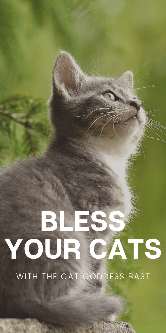 This cat blessing spell works from accurate historical and mythological information about the ancient Egyptian goddess Bast Use witchcraft to call on Bast  Bastet to bles...
