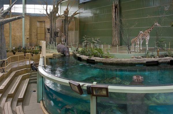 Calgary Zoo Zoo Architecture Zoo Park Zoo
