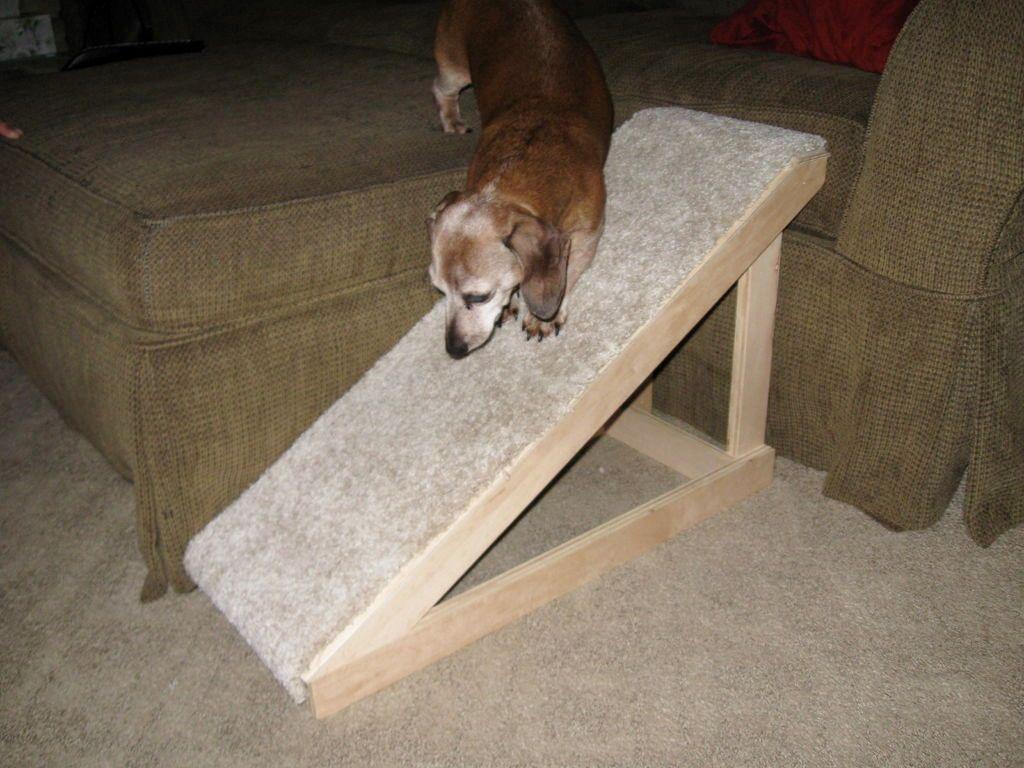 dog ramp steep