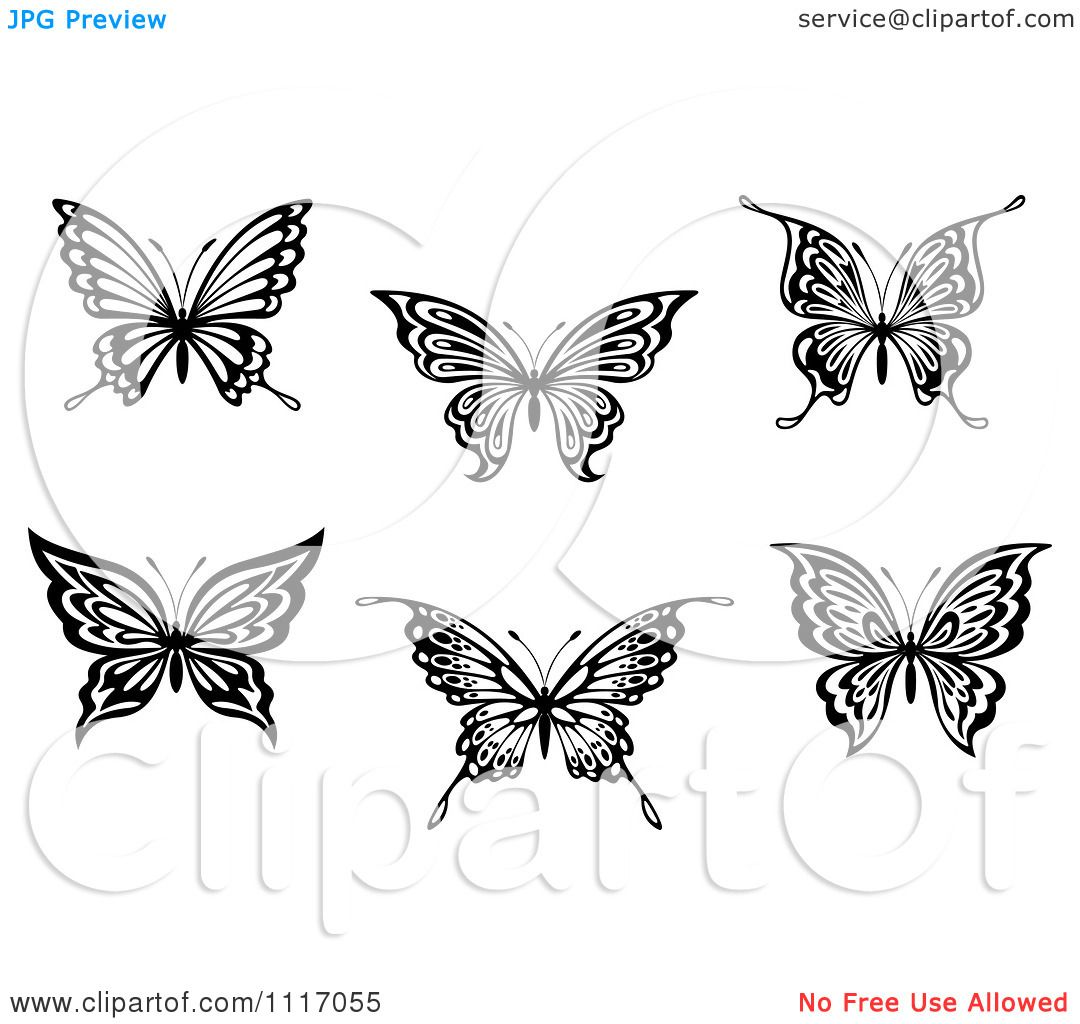 Vector Clipart Black And White Butterflies