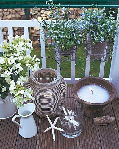 Pin Von Kathrin Wagner Auf Pflanzen: Balkon-Ideen Für Jede Himmelsrichtung