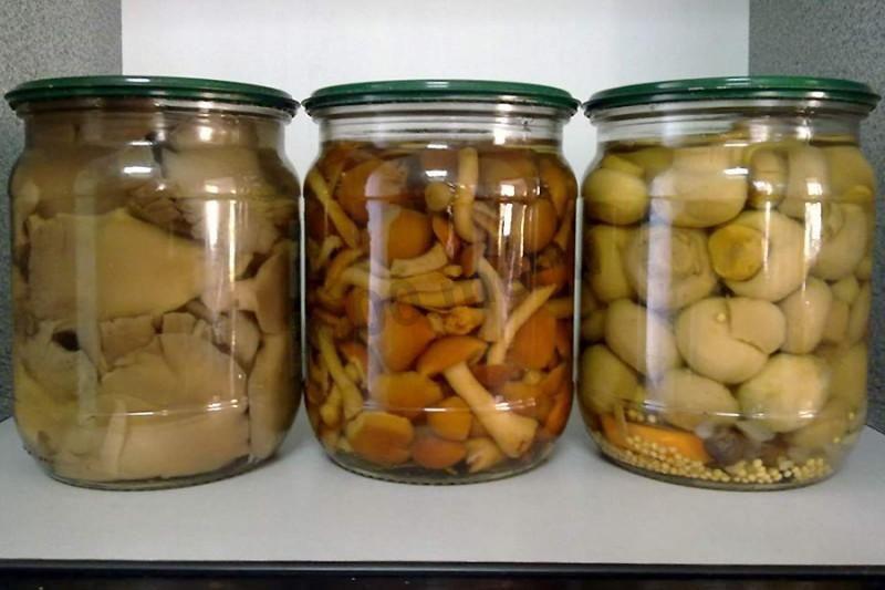 фасоль с грибами на зиму без стерилизации