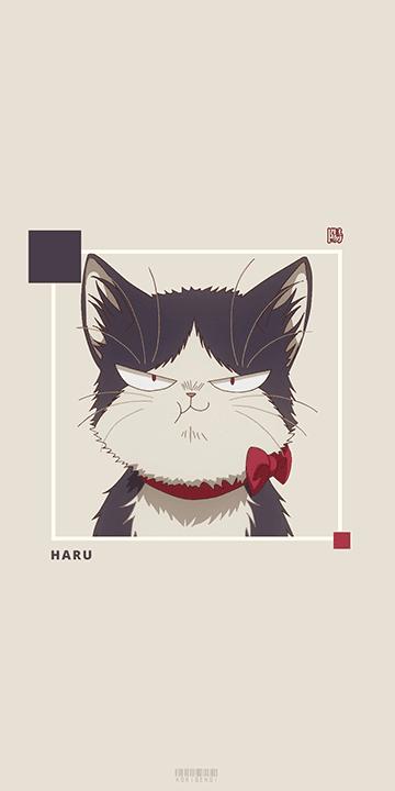 Haru My Roommate Is A Cat Wallpaper Cute Anime Cat Anime Cat Cat Wallpaper