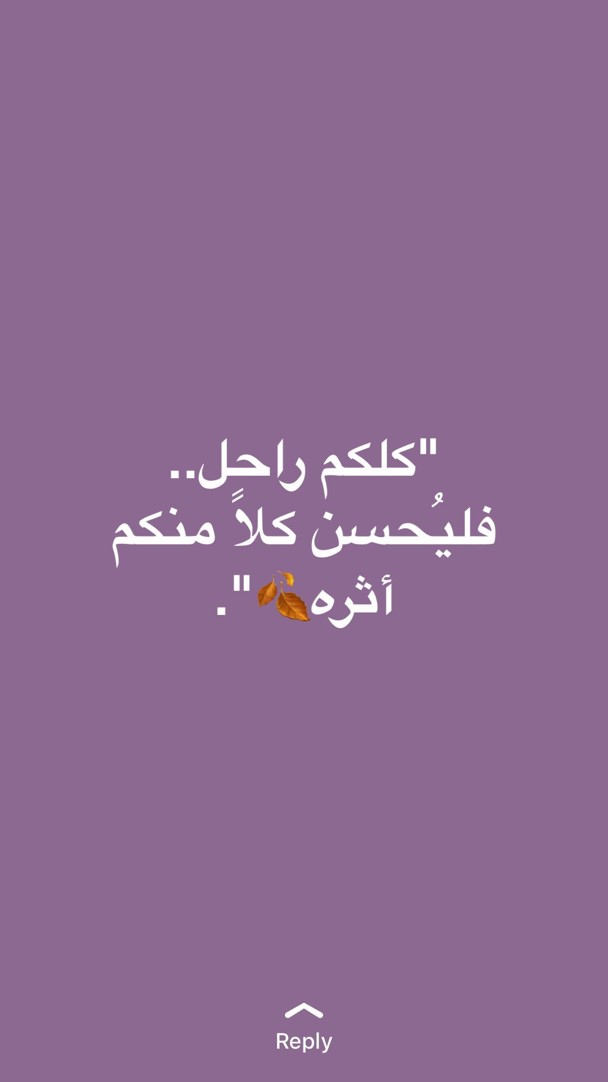 Pin by Sara hilal94 on arabic quotes | Arabic quotes, Quotes
