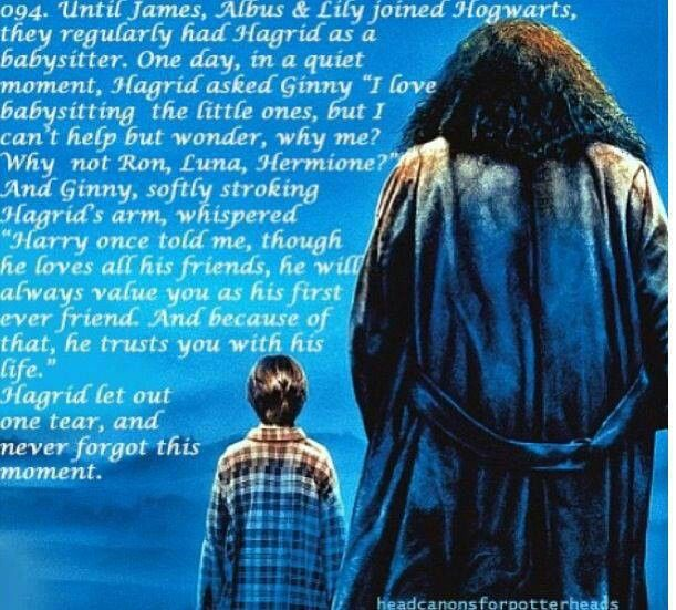 You know who else trusted Hagrid with his life? Yep, sharing the feels makes it better. Feel free to loathe me.