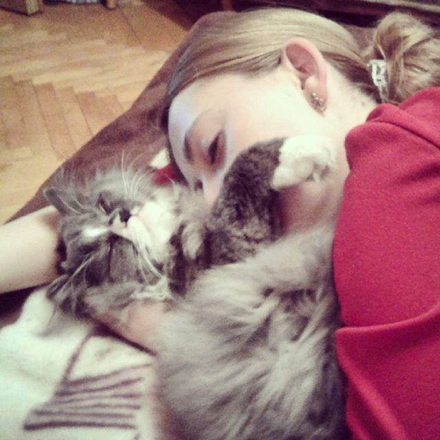 Sleepy Kitties DGAF About Your Comfort