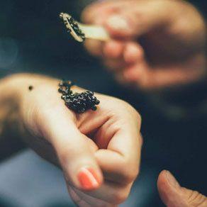 Calvisius Caviar, un caviale unico, che nasce dalla ricerca della perfezione per offrire l\'autenticità del gusto.