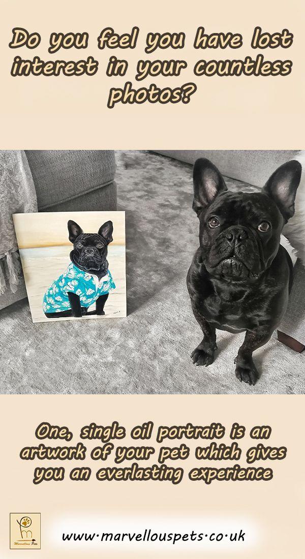 Custom oil pet portrait, pet loss gifts, dog lover gift