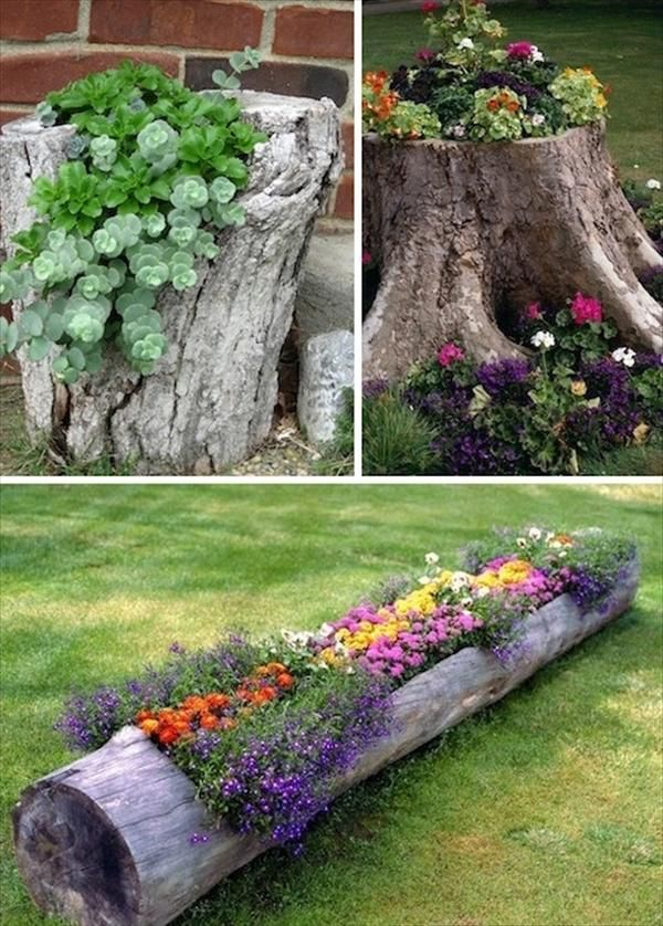 24 Creative Garden Container Ideas Use tree stumps and logs as planters!  This would be a great use for the old railroad tie in my yard!