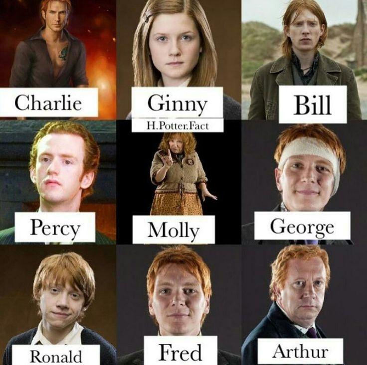 Die Ganze Weasley Familie Harry Potter Ron Harry Potter Wallpaper Harry Potter Characters