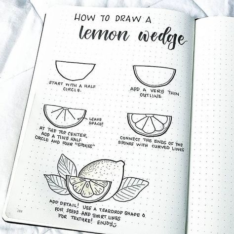 How To Draw A Lemon Wedge Bullet Journal Themes Bullet Journal Inspiration Journal Themes