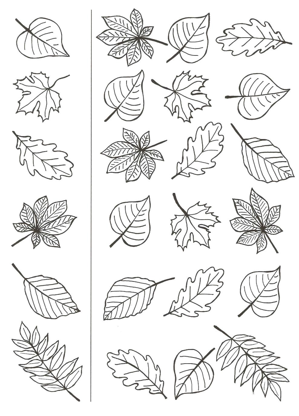 Pin By Mary Breveleri On Printables Pinterest Autumn Bullet And