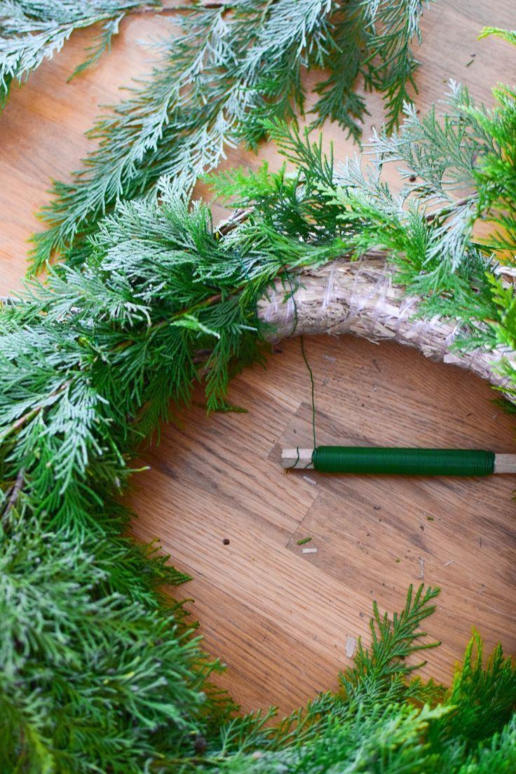 Photo of DIY Kränze aus Thuja – einfach, schnell und kreativ – Mrs Greenery