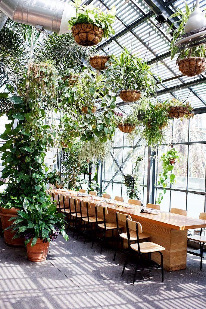 A Quick Guide to LA Gewächshaus, Wintergarten, Pflanzen