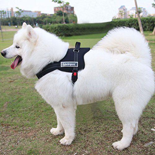 Lovinpet No Pull Harness For Pitbulls Other Medium Large Breeds