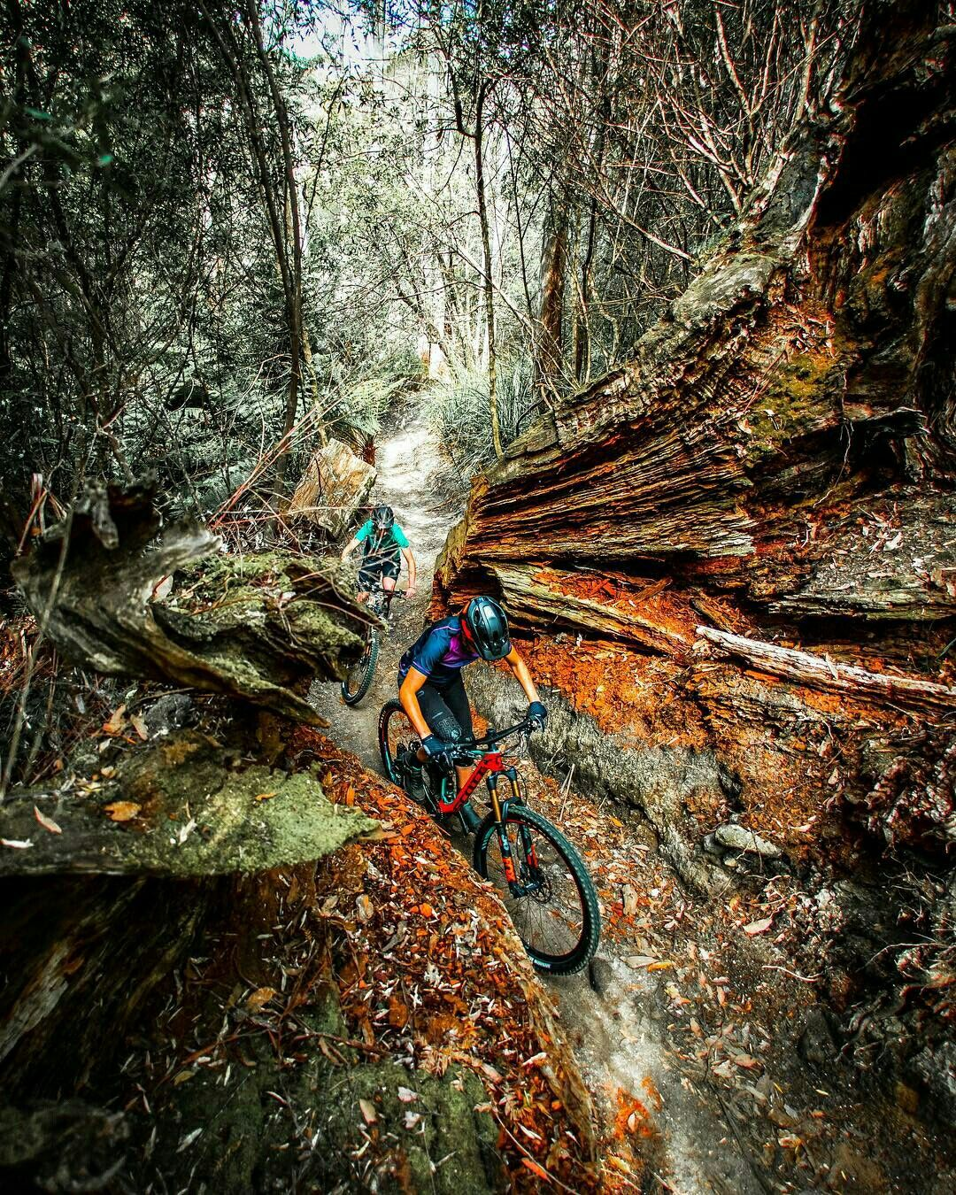 Mountain Bike Trails Mi