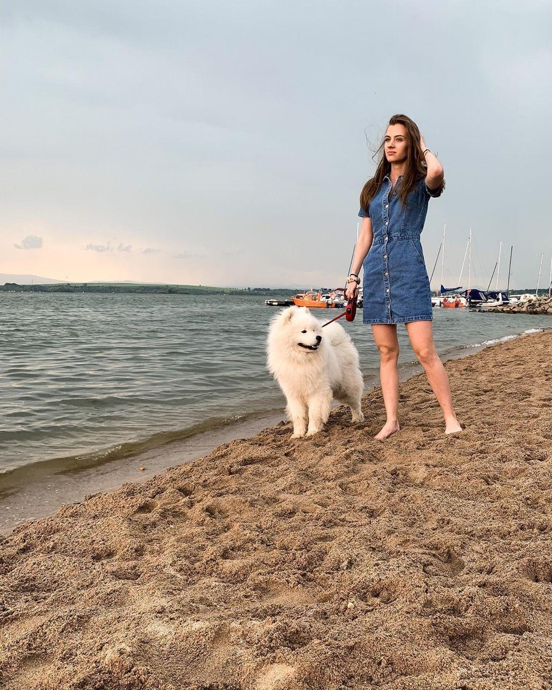 #samoyed #summer #beachvibes #l4l