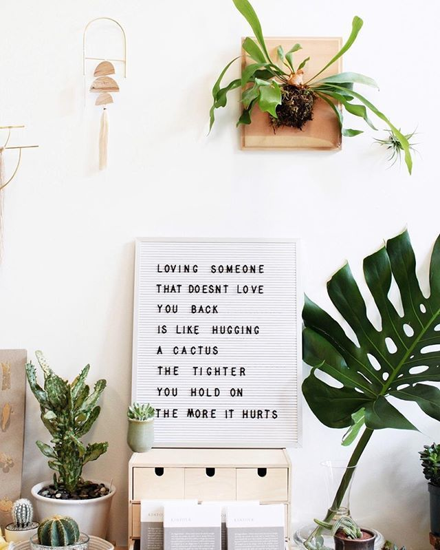 Cactus wisdom 🌵💚 urbanjunglebloggers