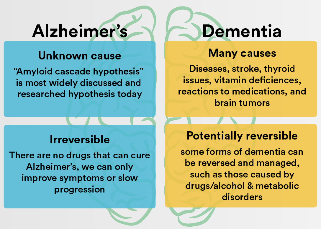 Dementia Vs Alzheimer S What Is The Difference